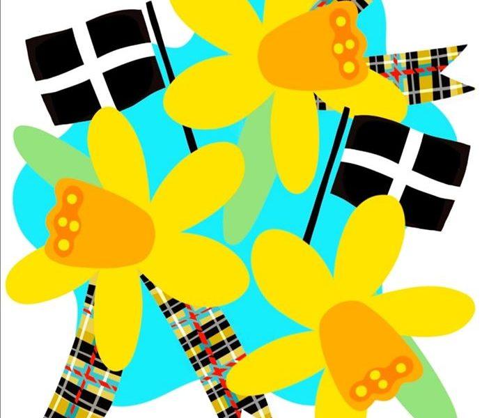 Redruth St Pirans Festival Saturday 7th March 2020